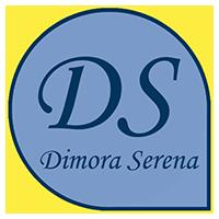 logo DS2